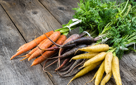 Close up of assorted fresh carrots.