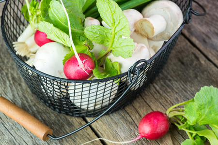 close up of onions in a basket: Close up of metal basket with mushrooms, green onions and radishes.