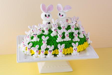 decoration: Close up of bunny cake on cake platter on pastel wooden background.
