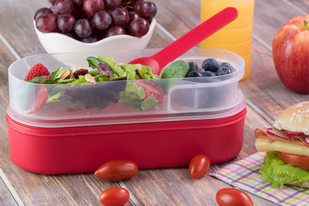 bento box: Close up of bento box with fresh green salad, cup with blueberries, bowl of grapes.