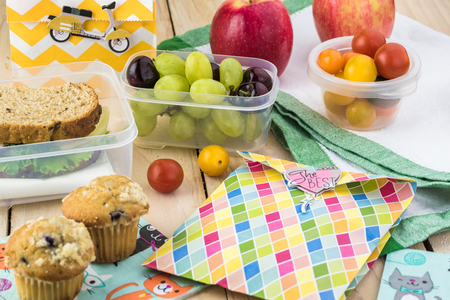 Close up of school lunch sandwich with cheese, radish on a cutting board, cookies in treat bag, blueberry cap cake fruits.
