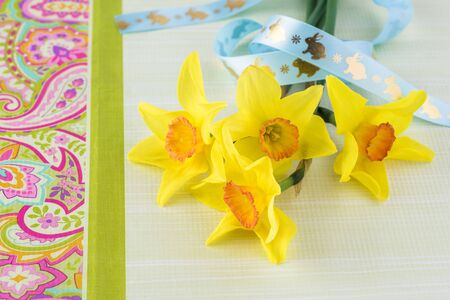 Easter greeting card concept. Spring flowers decorated with bunny ribbon. Stock Photo