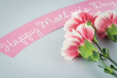 Greeting card with multicolored carnations for Mothers Day.