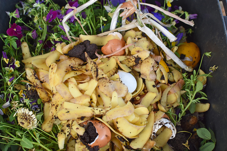 View into a bio container  with various organic wastes such as potato peels, eggs, escallion and flowers for recycling Stock Photo