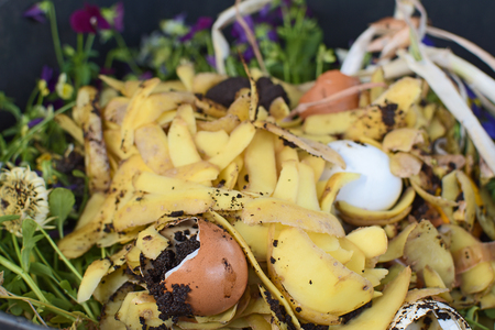 View into a bio container  with various organic wastes such as potato peels, eggs, escallion and flowers for recycling focussed at the brown egg in the foreground.