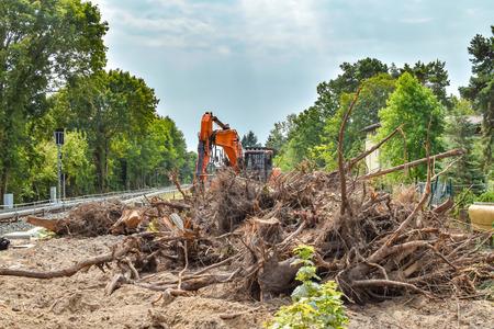 Enlèvement de la végétation dans le sud de Berlin en préparation de l'élargissement de la ligne de chemin de fer pour la liaison ferroviaire entre Berlin et Dresde, Allemagne