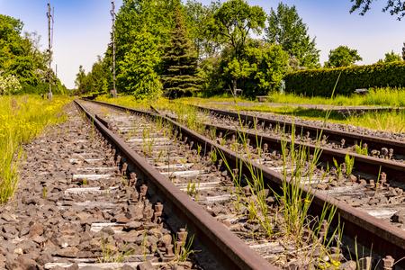Low angle shot of a disused railway track in Brandenburg, Germany, which is only used for trips with a draisine.