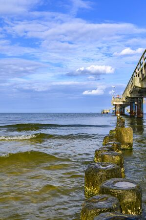 Wooden groynes covered with yellow green algae (Xanthophyceae) under a pier with columns of concrete and rusty metal.