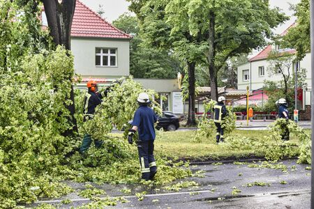 Berlin, Germany - June 12, 2019: An uprooted tree lying on a main street in Berlin, Germany, after a heavy storm. The police are blocking the road and firefighters are clearing away the branches.