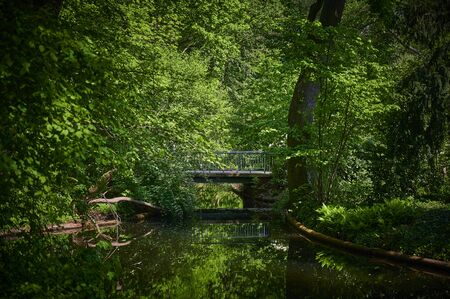 Rural scene in a public park in the middle of the capital Berlin, Germany, with a view to a bridge that is reflected in the water. Standard-Bild