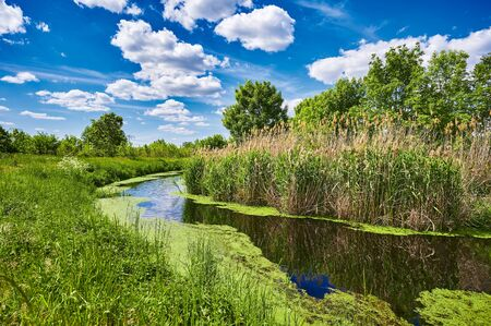 Blue and cloudy sky over a little creek in the surrounding countryside of Berlin, Germany. Standard-Bild - 147784275