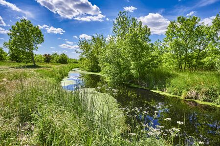 Blue and cloudy sky over a little creek in the surrounding countryside of Berlin, Germany. Standard-Bild - 147784291