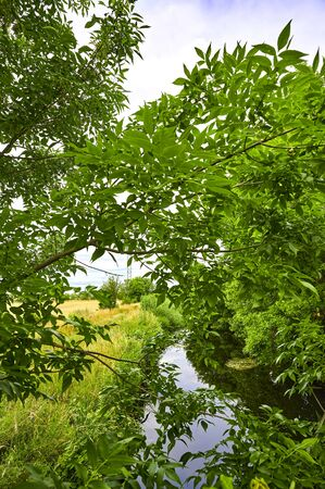 View through branches to a little creek, meadows and bushes. Standard-Bild