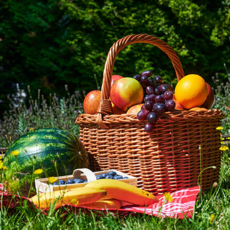 Basket of various fruits in the sunlight on a meadow with yellow flowers. Standard-Bild