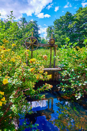 Old rusty weir of a watermill amid green reeds and yellow flowers.