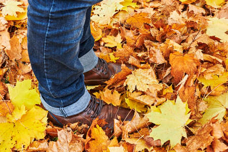 Golden autumn leaves lying on the ground on a footpath in a park. You see a walker's shoes standing in the leaves. 版權商用圖片