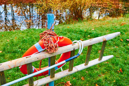 Ladder and orange lifebuoy at the edge of a lake in a park.