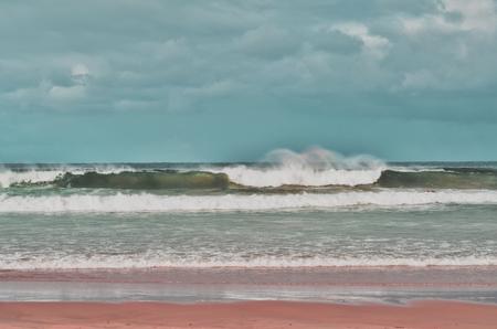 Dalmeny beach, NSW, Australia