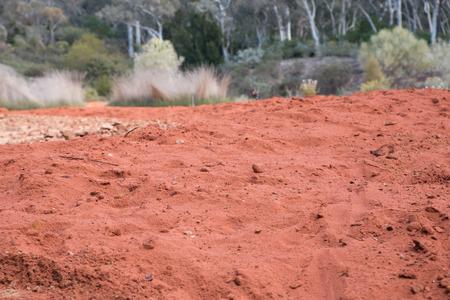 Red sandy soil, Botanical Gardens, Canberra, Australia