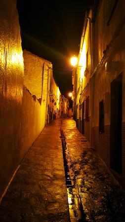 A narrow Spanish street at night. Raining with wet stones and bright streetlight.