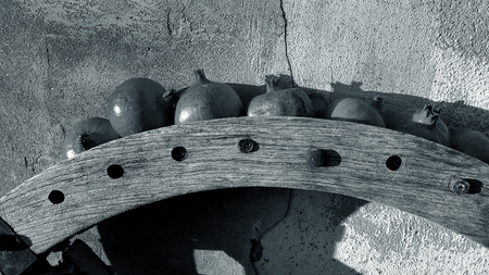 Old wooden wheel gear with rusty metal handle and brackets. Olive oil processing equipment. Garden wall, pomegranates in evening sunshine.