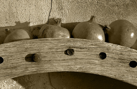 Old wooden wheel gear with rusty metal bolts and brackets. Olive oil processing equipment. Garden wall, pomegranates in evening sunshine. Monochrome, sepia tone, black and white.