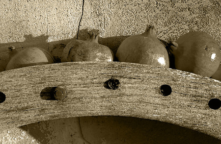 Old wooden wheel gear with rusty metal handle and brackets. Olive oil processing equipment. Garden wall, pomegranates in evening sunshine. Monochrome, sepia tone, black and white.
