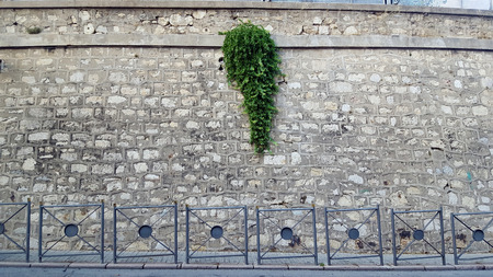 Stone wall by a road with railings and green plants
