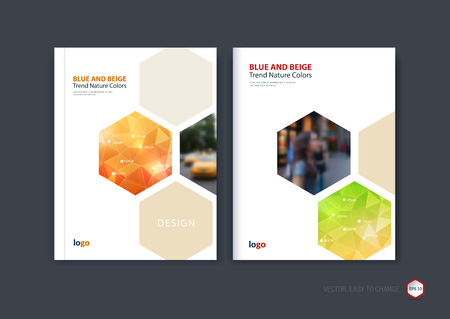 print template: Abstract cover design, business brochure template layout, report, booklet in A4 with red orange, green and lime hexagonal geometric shapes on polygonal background. Creative vector Illustration.