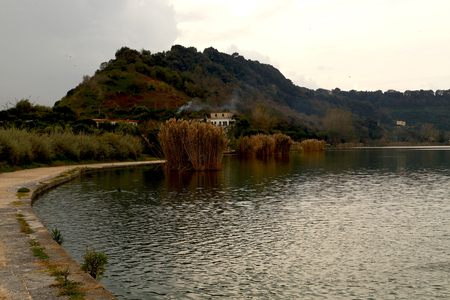 rushes: Riva Lago dAverno Stock Photo