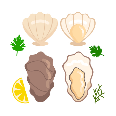 Fresh open and close oyster set. Sea food concept. Vector flat cartoon design graphic illustration icon