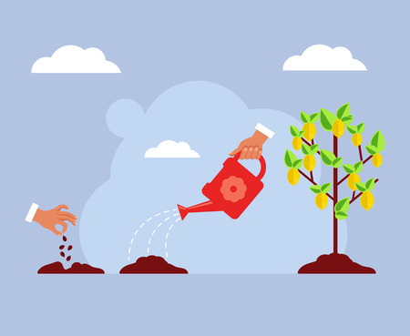 Seed lemon fruit tree growing stages steps. Gardening concept. Vector flat cartoon design graphic isolated illustration
