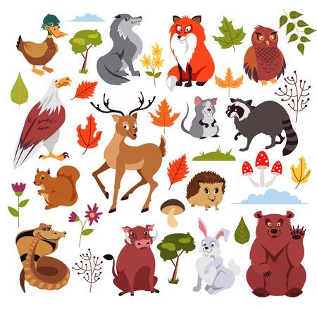 Animaux de la forêt sauvages sertis de plans, de champignons et d'arbres. Conception graphique pour livre pour enfants. Illustration de dessin animé plat isolé de vecteur Vecteurs