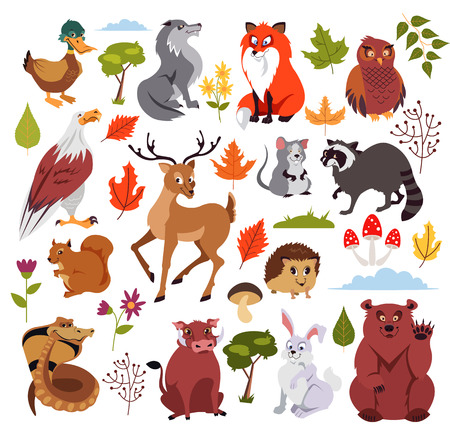 Wild forest animals set with plans, mushroom and tree. Graphic design for children book. Vector flat isolated cartoon illustration Vector Illustration