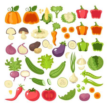 Vegetables food slice icon set collection concept. Vector flat cartoon graphic design illustration Reklamní fotografie - 132260193
