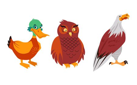 Forest birds duck eagle owl characters isolated set. Vector flat graphic cartoon illustration design Standard-Bild - 142807505