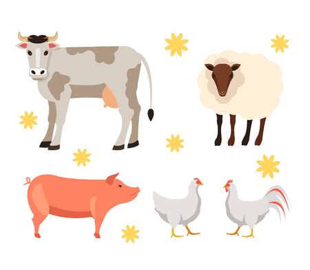 Farm animals cow, rooster, chicken, pig and sheep isolated set. Vector flat graphic cartoon illustration design
