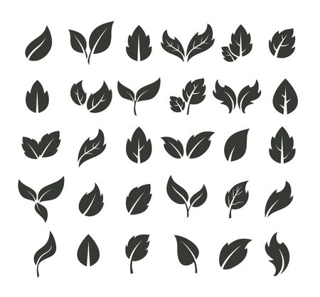 Leaf silhouette icon isolated set. Vector flat graphic cartoon illustration design Illustration