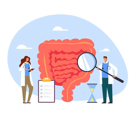 People medicine workers doctors nurse making medicine diagnostic research intestines. Healthcare and medicine concept vector flat cartoon graphic design illustration Illustration