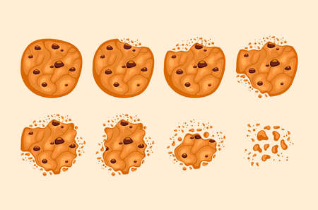 Bitten chocolate cookie isolated on white background vector cartoon set