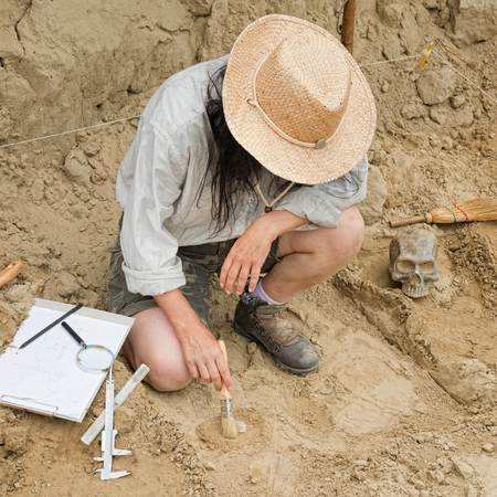 archaeologist: Archaeological excavation - Archaeologist revealing and documenting objects from past