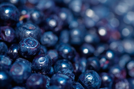 nutriment: Blueberry macro shot, shallow depth of field, left heap in focus, convenient copy space on the right Stock Photo