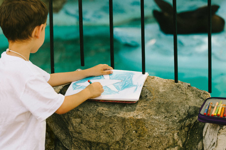 captive animal: Little boy drawing a captive seal in a zoo or wild animal park. Selective focus set on his work, animal blurred, toned image