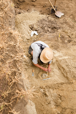 archaeologist: Archaeologist recovering human remains from ancient grave