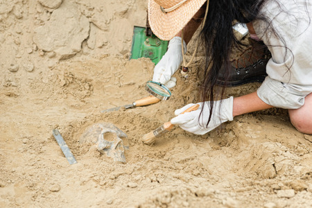 Anthropologist unearthing ancient human scull Stock Photo