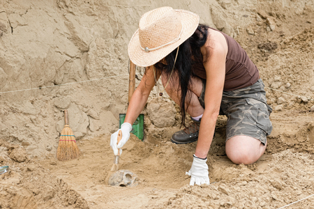 archaeologist: Archaeologist working in field, carefully revealing ancient skull