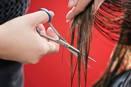 cutting hair: Cutting hair Stock Photo