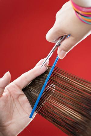 cutting hair: Hairdresser cutting hair