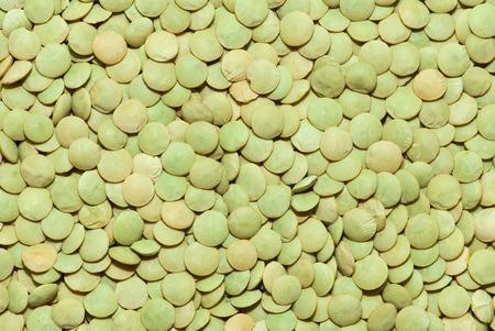 lentejas: patrón de lentejas verdes