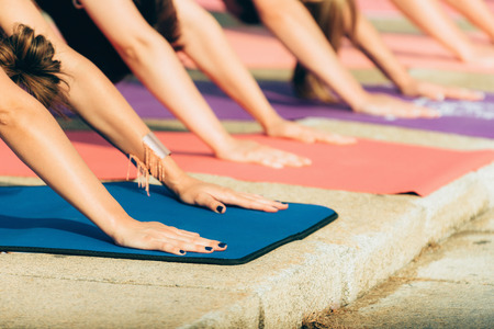 selective focus: Yoga day- group of people in downward dog pose